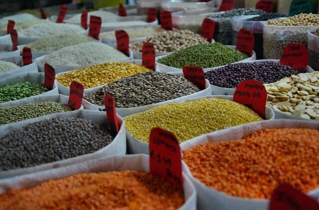 what are the best seeds to buy (1)