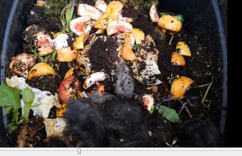 how to make compost from kitchen waste at home