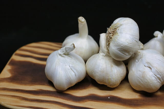 How To Grow Garlic From Scraps