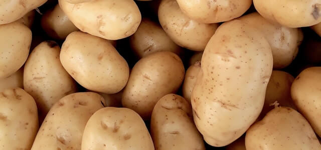 How To Grow Potatoes From Potatoes, Scraps, And In Water