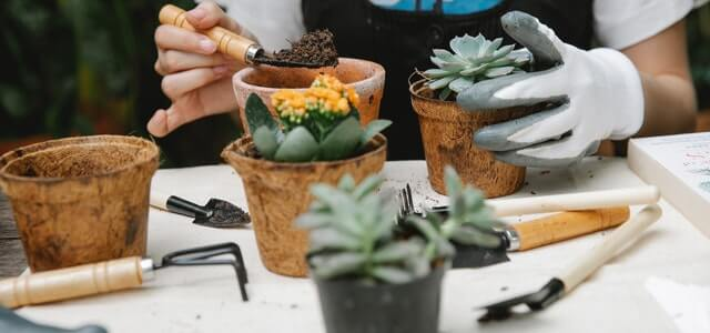 15+ Must-Have Gardening Tools And Their Uses