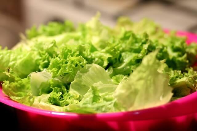 store lettuce seeds (1)