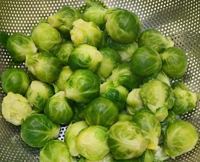 How to Grow Brussel Sprouts from Scraps