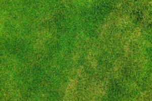 How To Apply Liquid Aeration Soil Loosener