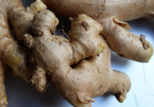 What Does A Ginger Plant Look Like